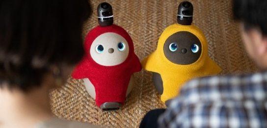 【ショップチャンネル】家族型ロボット「LOVOT(ラボット)」